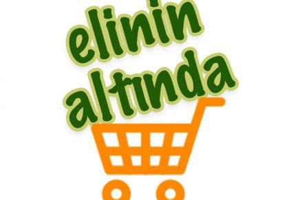 elininaltinda